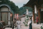 The Romance of Tiger and Rose (2020) Episode Episode 11