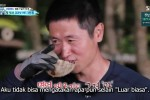 The Law of the Jungle in Palawan (2020) Episode Episode 413