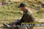 Law of the Jungle in Wild Korea (2020) Episode 428 Episode Episode 425